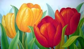 flores-tulipa