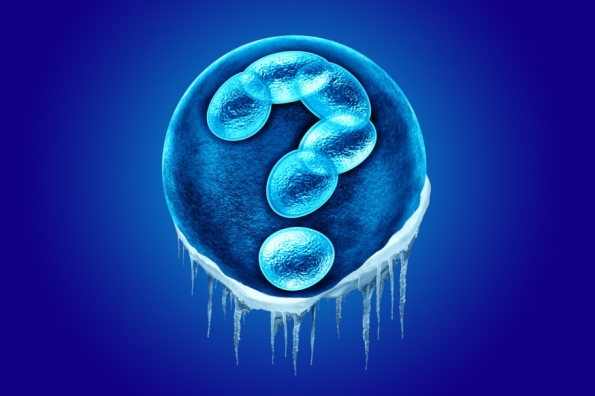 web-embryo-human-frozen-shutterstock_296399099-lightspring